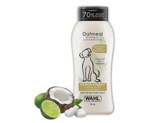 wahl dry dog shampoo