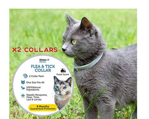 nieko flea collar, seresto flea collar for cats reviews