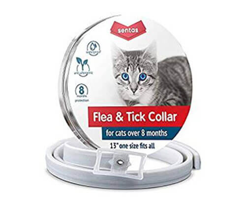 sentas flea collar, flea collar for cats, best flea collar for cats
