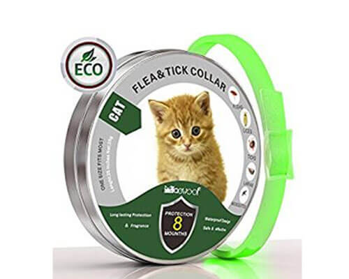 solacium collar, sentry flea collar for cats