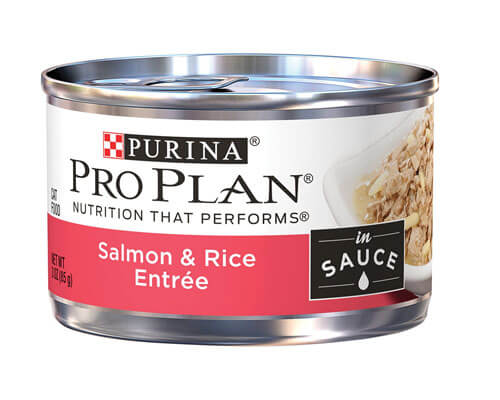 purina pro plan entree, high protein cat food for older cats