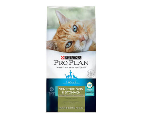 purina pro plan focus cat food, best dry cat food for older cats