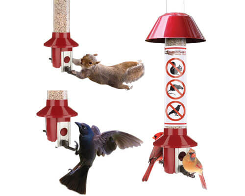 Roamwild Bird Feeder