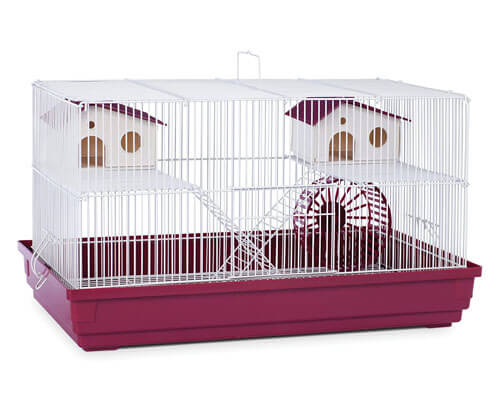 Prevue Hendryx case, large gerbil cage