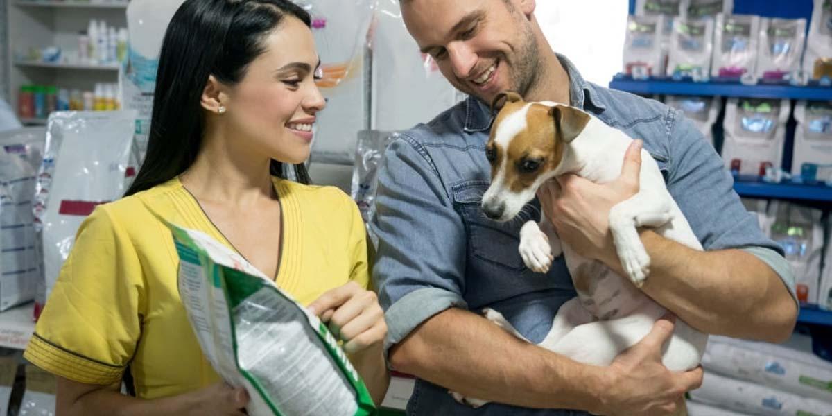 best dog food for shedding, best reviewd dog food for shedding