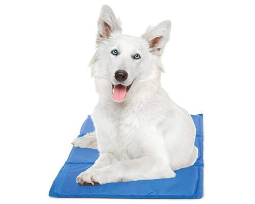 Chillz Dog Cooling Mat