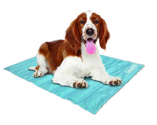 coleman dog mat, high quality dog cooling mat, best dog cooling mat