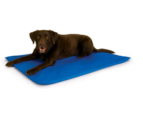 k and h pet cooling pad, best dog cooling pad