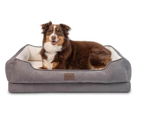 pet craft supply dog bed, dog couch