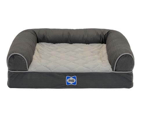 sealy dog couch, couch for dogs