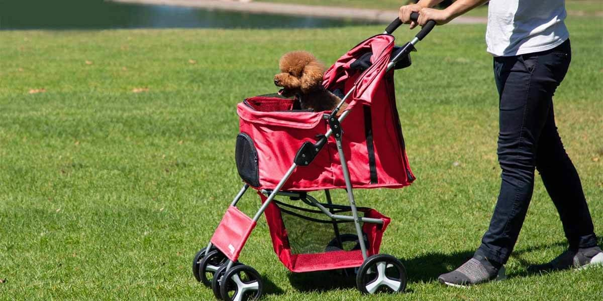 best dog stroller, best pet dog stroller