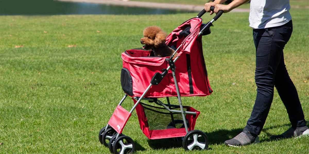 best dog stroller, best pet dog stroller